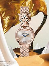 杂志 女式 手表 商务手表图片4567578