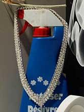 雜志 女式 頸飾 項鏈圖片4672667